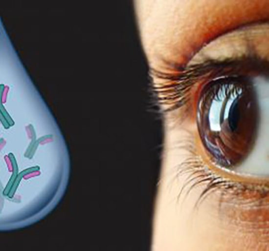 antibody-based dry eye treatment